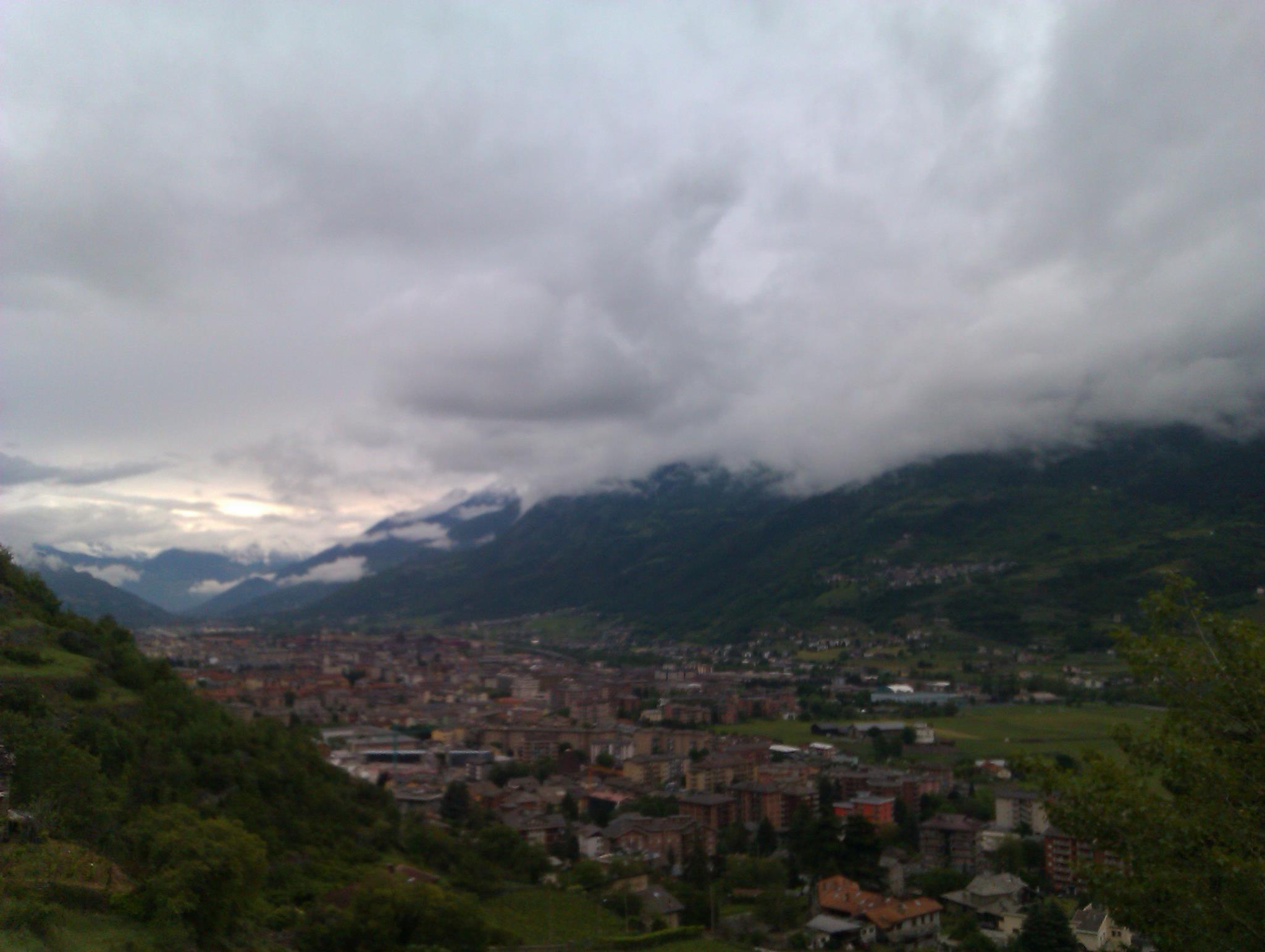 Treesje - Italiaanse Alpen